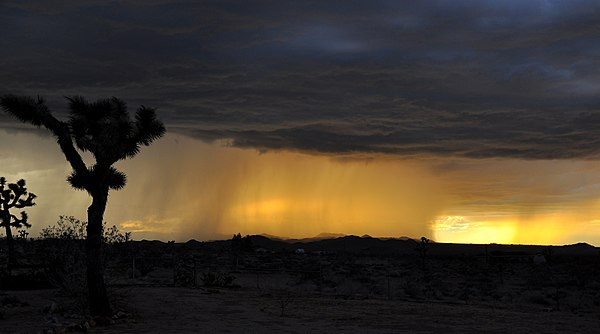 Heavy rain falling over the desert at sunset Rain Falling over Desert at Sunset.jpg