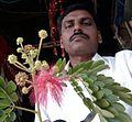 Rain Tree Flower (1).jpg