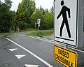 Raised pathway crossing.jpg