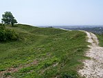 Ramparts, Cissbury Ring - geograph.org.uk - 1332728.jpg