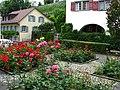 Rapperswil - Altstadt - Hintergasse IMG 3075.jpg