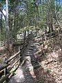 Raymondskill Falls - Pennsylvania (5678033748).jpg