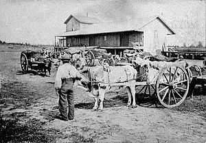 Red River cart - Red River ox cart at a railway station