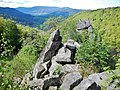 Reichental, Orgelfelsen, Granit, maximale Felshöhe, 40 m - panoramio.jpg