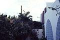 Residential architecture and gardens, Dakar, Sénégal (west Africa) 1981 (3123141265).jpg