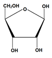 Ribosa estructura química.pgj.png