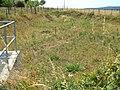 Riedgraben Abwassersammelbecken von B 3.jpg