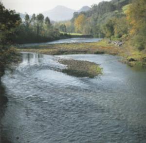 Pas (river) - Image: Rio Pas