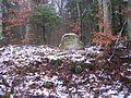 Ritterstein 201 Ruine Fraunerhof.JPG