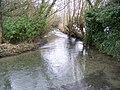River Ebble, Bishopstone - geograph.org.uk - 1655469.jpg