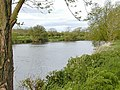 River Trent - geograph.org.uk - 7481.jpg