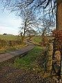 Road near Shutterflat Farms - geograph.org.uk - 700136.jpg