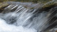 File:Roaring Fork Falls Black Mountain Campground Pisgah Nat Forest NC 4365.webm