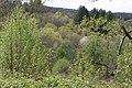 Rochers-Puychaud 09.jpg