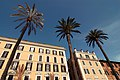 Roma-piazzaspagnapalazzi.jpg