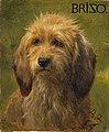 Rosa Bonheur - Brizo the dog.jpg