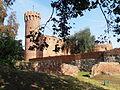 Ruiny zamku krzyżackiego w Świeciu 12.JPG