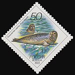 Russia stamp 1993 № 104.jpg