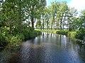 Rzeka Ner - panoramio.jpg