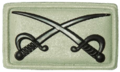 SANDF Qualification Assistant PT Instructor Crossed Swords badge embossed.png