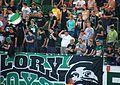 SV Ried gegen FC Red Bull Salzburg (August 2016) 43.jpg