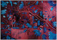S Sandy Skoglund - Breeze at Work (1987).jpg