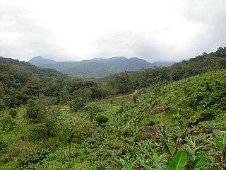 Serra do Mar Environmental Protection Area