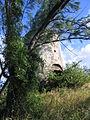 Saint Lucy, Barbados 015.jpg