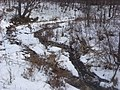 Salt Springs State Park (3284698204).jpg