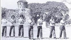 Arnis Wikipedia