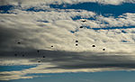 Santa exchanges sleigh for C-130J Super Hercules 141215-F-MF529-070.jpg