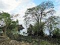 Sao Tome Blue Lagoon 2 (16223058836).jpg