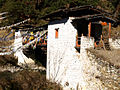Scenes from the West - Bhutan.jpg