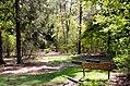 Scoutcentrum Buitenzorg Baarn - panoramio (16).jpg