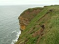 Sea Cliff buttress along the Cleveland Way - geograph.org.uk - 467967.jpg