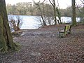 Seat at viewing point of Balcombe Lake - geograph.org.uk - 1620977.jpg