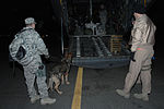 Security Forces Handler and K-9 Head to Iraq DVIDS144781.jpg