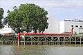 Serpentine rouge (Estuaire, Indre) (7715839522).jpg