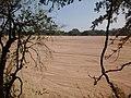 Shashe River in Botswana, a highly ephemeral river.jpg
