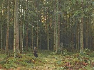 Countess Mordvinova's Wood. Peterhof