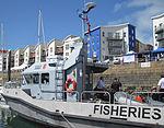 Show des Batchieaux Jersey Boat Show 2013 37.jpg