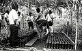 Shuar Project Assistants Check Cocoa Plants for Caterpillars, Bolivia, circa 1990 (13875624663).jpg
