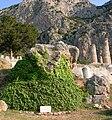 Sibyl stone in Delphi.jpg