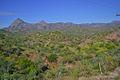 Sierra La Giganta.jpg