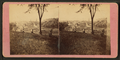 Sighseers on the bluff. Dubuque, Iowa, by Root, Samuel, 1819-1889.png