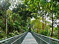 Singapore Southern Ridges Hilltop Walk 20.jpg