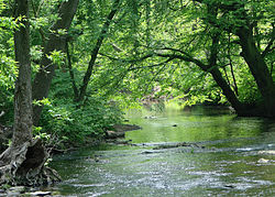 Darby Creek in Haverford Township