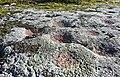Skålgropar 02.jpg