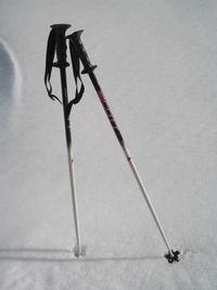 лыжные палки википедия