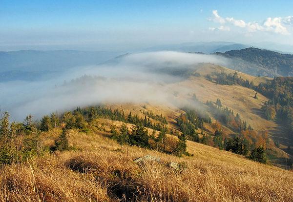Хребет Парашка, НПП «Сколівські Бескиди», © Сергій Криниця, CC-BY-SA 3.0